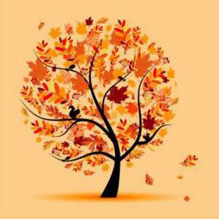 Осенний пик спроса на окна